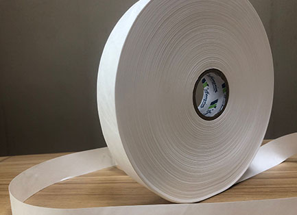 Thick Tyvek Paper B100